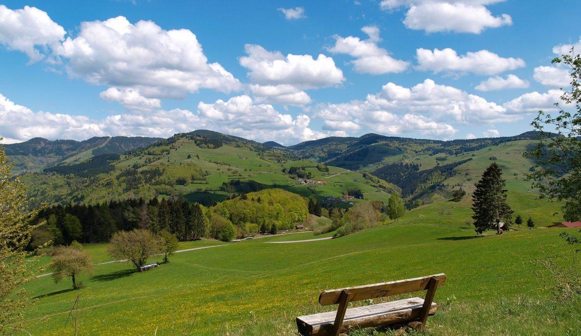 Aussicht von einem der vielen Wander Wege in Winden im Elztal, mit Bank zum Ausruhen für die Wanderer des Süd-Schwarzwaldes