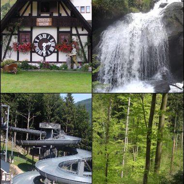 Uhrenmuseum, die größte Kuckucksuhr der Welt, Baumkronenweg Waldkirch, Steinwasenpark Oberried