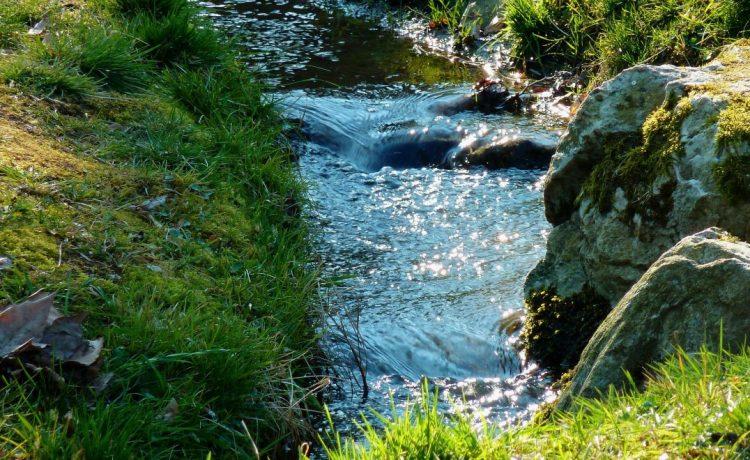 Durch Gestein und Wiesen fließender, wilder Bachlauf entlang einer Wanderroute in Winden im Elztal