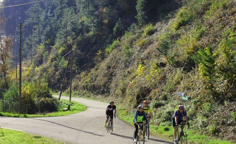 Gemeinsame Fahrradtour in Winden im Elztal im Süd-Schwarzwald