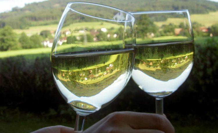 Hörnlebergpanorama beim Anstoßen mit badischem Weißwein