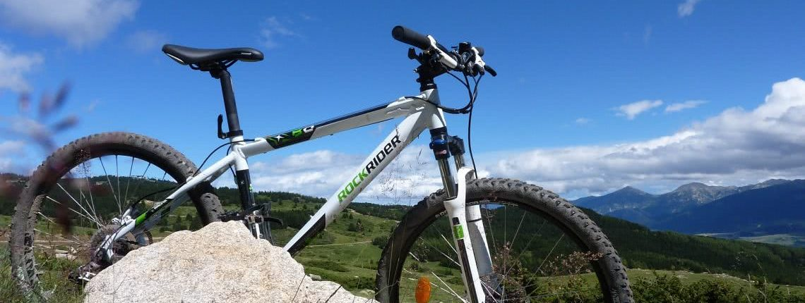 Abgestelltes Rockrider Mountainbike