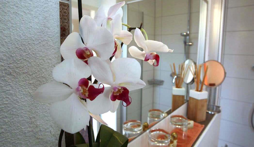 Orchideen-Dekoration im Badezimmer in der Pension am Rain