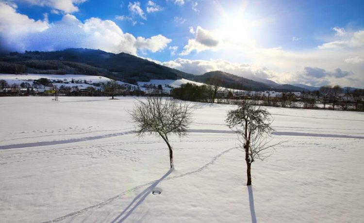 Aussicht über die schneebedeckte Wiese von der Terrasse der Pension am Rain aus