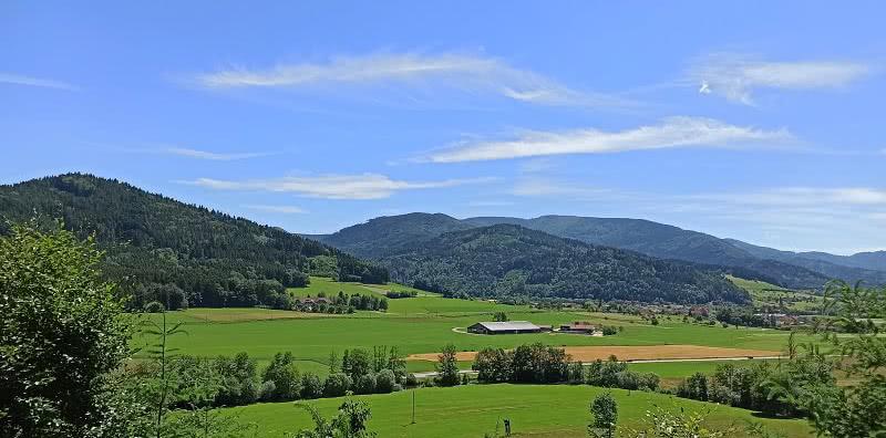 Aussicht auf Bleibach - Schwangeneck-Tour
