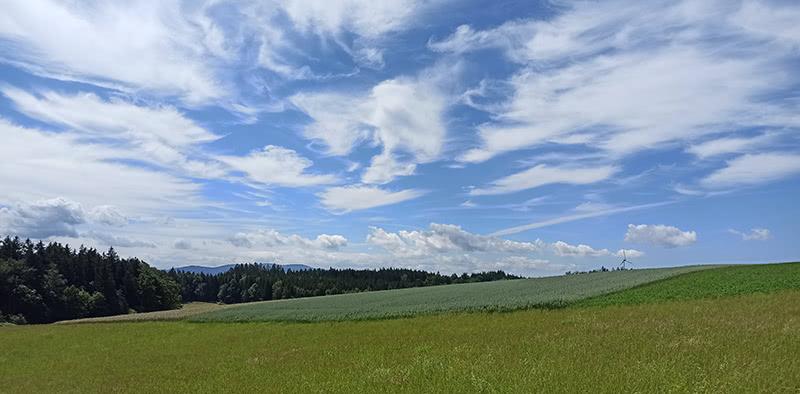 Wiese mit Wolkenformation - Hockeweg Freiamt