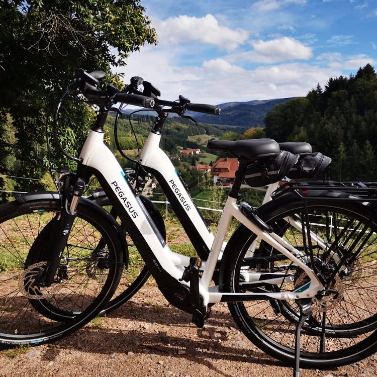 E-Bikes der Pension am Rain