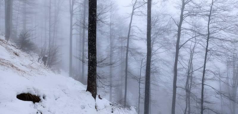 Steiler Hang auf der Kandel-Tour im Winter